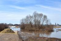 Разлив реки Теши в районе села Заречного